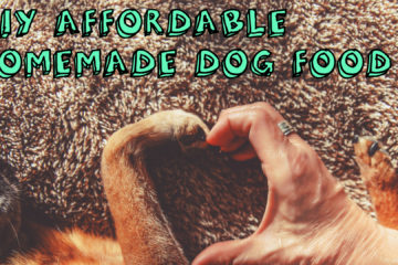 DIY Affordable Homemade Dog Food Recipes