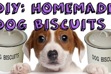 DIY: Homemade Dog Biscuits