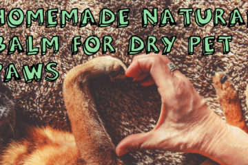 Homemade Natural Balm For Dry Pet Paws
