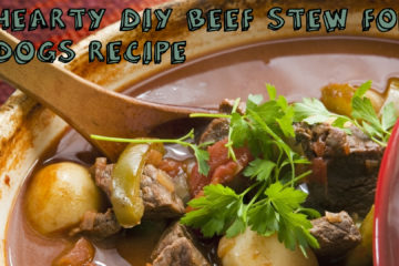 Hearty Beef Stew For Dogs Recipe