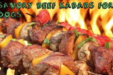 Savory Beef and Chicken Kababs For Dogs