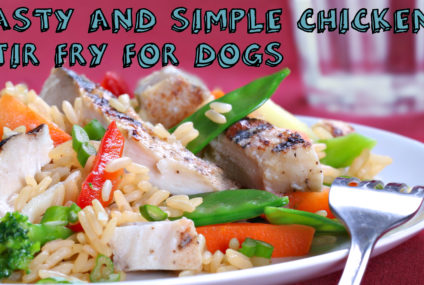 Tasty and Simple Chicken Stir Fry For Dogs