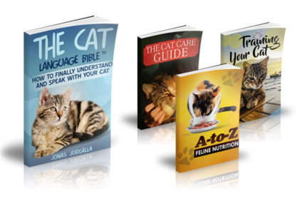 The Cat Language Bible Review: Can You Really Talk To Your Cat?