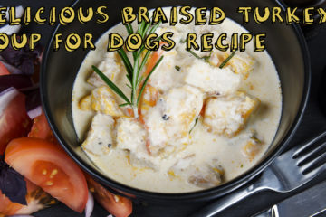 Delicious Braised Turkey Soup for Dogs Recipe