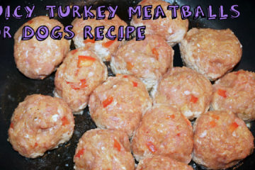 Juicy Turkey Meatballs for Dogs Recipe