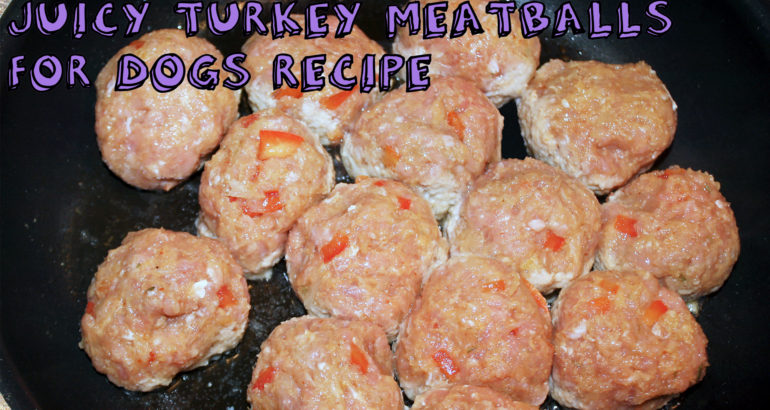 Juicy Turkey Meatballs For Dogs Recipe Recipes For Pets