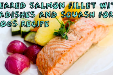 Seared Salmon Fillet With Radish and Squash for Dogs Recipe