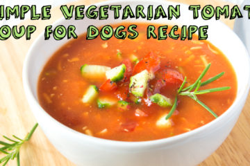 Simple Vegetarian Tomato Soup for Dogs Recipe