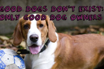Good Dogs Don't Exist: Only Good Dog Owners